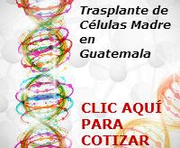 costo de trasplante de células madre en Guatemala